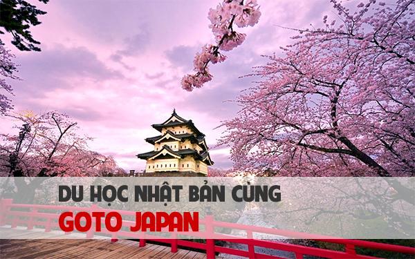 Danh sách công ty tư vấn du học Nhật Bản uy tín miền Bắc 5