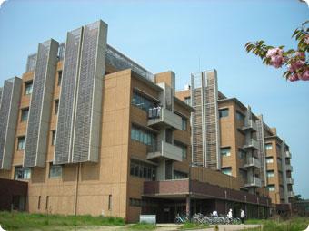 Trường đại học Niigata Nhật Bản