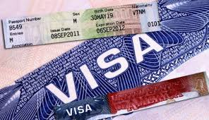 Hướng dẫn thủ tục xin visa để ở lại Nhật xin việc sau khi tốt nghiệp đại học, senmon
