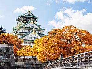 Đi du học tại Osaka - Nhật Bản nên chọn trường nào?