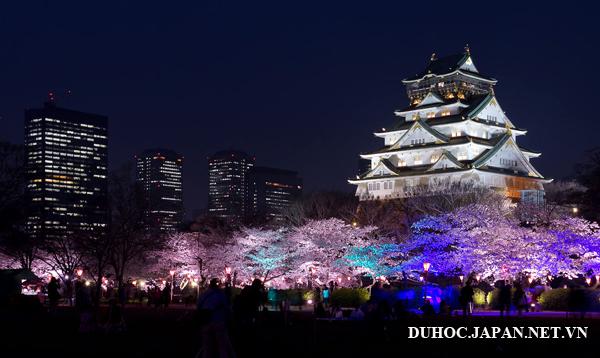 Thực hiện giấc mơ du học tại thành phố Osaka Nhật Bản, tại sao không?